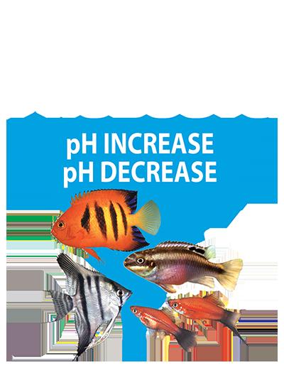 Ph Increase And Ph Decrease Kordon